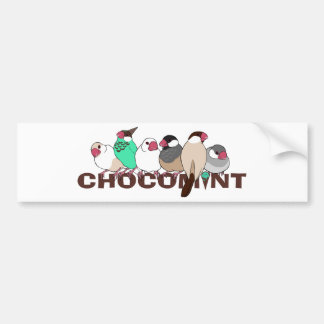 Chocolate mint java sparrow bumper sticker