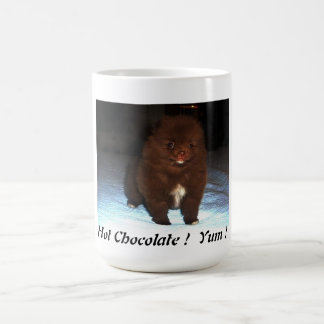 Chocolate pomeranian puppy on mug