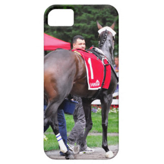 Chocolate Wildcat in the 100th Sanford Stakes Case For The iPhone 5