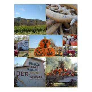 Choestoe Valley Produce Postcard