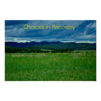 Choices in Recovery  poster/Motivational III Poster
