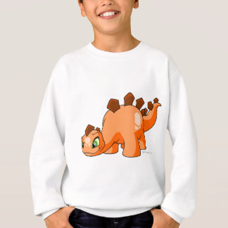 Chomby Orange Sweatshirt