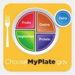 Choose My Plate (Orange) Stickers