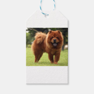 Chow Chow Dog Poses Gift Tags