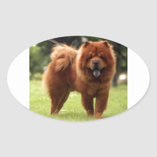 Chow Chow Dog Poses Oval Sticker