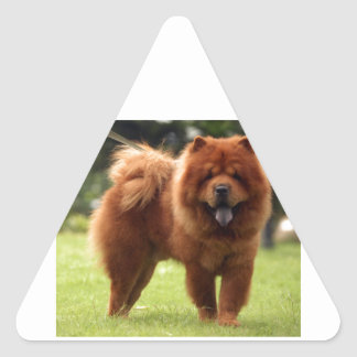 Chow Chow Dog Poses Triangle Sticker