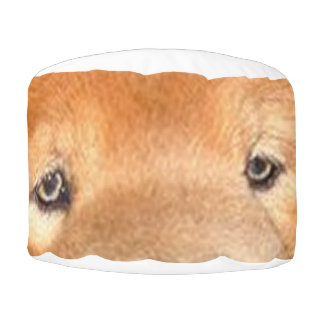 chow chow eyes pouf