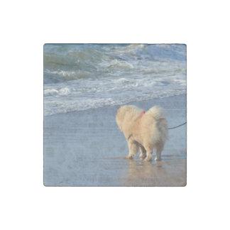 chow chow on beach stone magnet