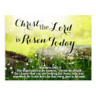 Christ the Lord is Risen Today Matthew 28:5 Easter Postcard