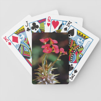 Christ Thorn Bicycle Playing Cards