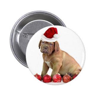 Christas Dogue de Bordeaux puppy Pinback Buttons