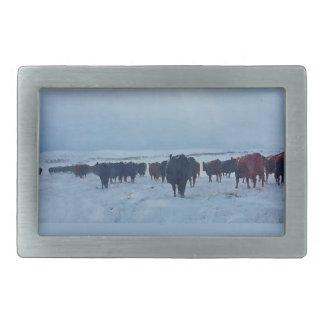 Christian western art of cattle and cows rectangular belt buckles