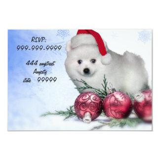 Christmas American Eskimo puppy Card