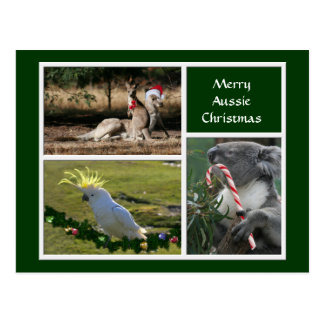 Christmas Animals Aussie Style - Personalizable Post Cards