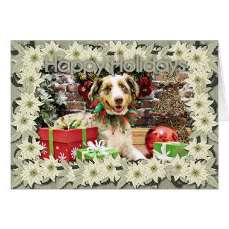 Christmas - Australian Shepherd - Cash Greeting Cards