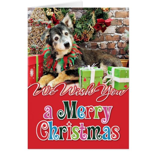 Christmas - Australian Shepherd - Gunnie Cards