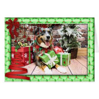 Christmas - Australian Shepherd - Kiko Cards