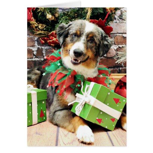 Christmas - Australian Shepherd - Loki Greeting Card