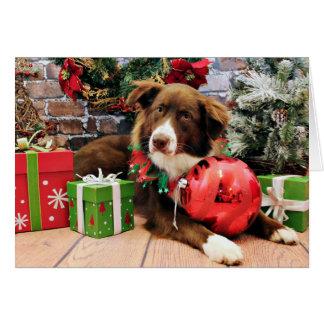 Christmas - Australian Shepherd - Molly Card