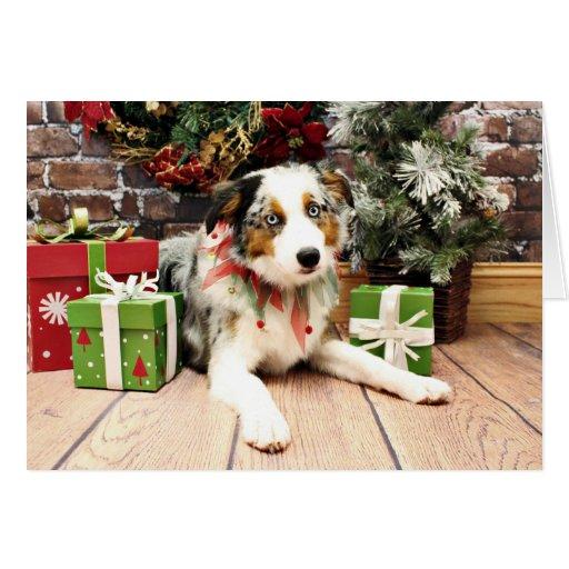Christmas - Australian Shepherd - Ozzie Card