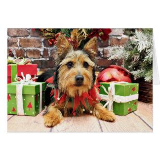 Christmas - Australian Terrier - Leo Greeting Card