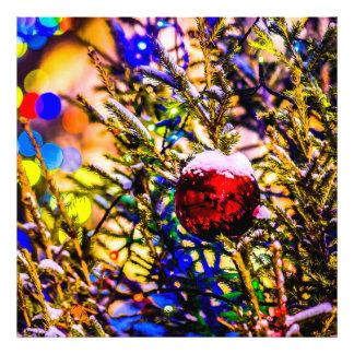 Christmas Ball Red Photo