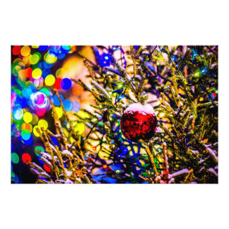 Christmas Ball Red Photograph