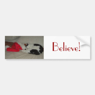 Christmas Believe Kitty Cat Bumper Stickers