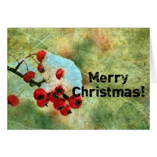 Christmas Berries Greeting Card