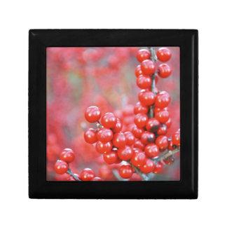 Christmas berries red gift box