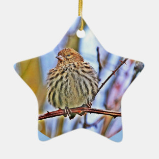 Christmas Bird Ceramic Star Decoration