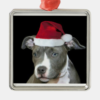 Christmas blue pitbull puppy metal ornament