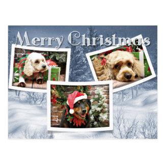 Christmas - Border Collie - Cockapoo Postcard