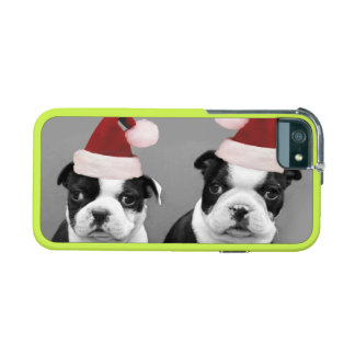 Christmas Boston Terrier puppies iPhone 5/5S Case
