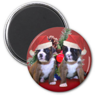 Christmas boxer puppies magnet