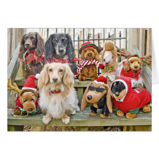 Christmas brings the whole family together card