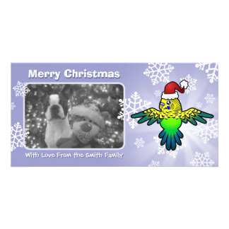 Christmas Budgie Photo Cards