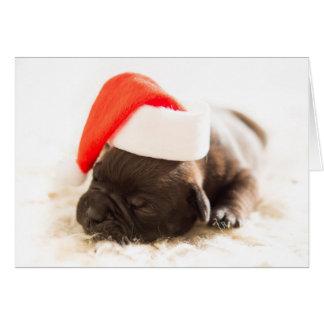 Christmas Bulldog Puppy Card - BLANK INSIDE