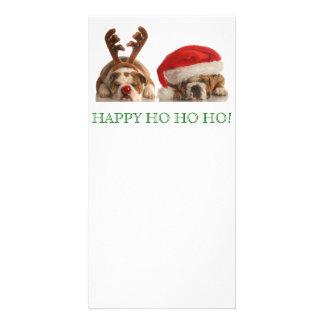 Christmas Bulldogs Postcard Photo Cards