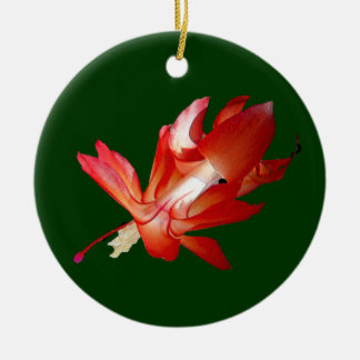 Christmas Cactus Epiphyte Ornament