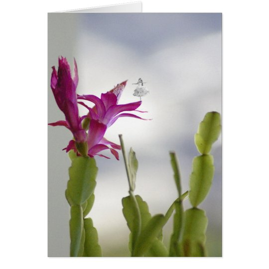 Christmas Cactus Shadow Fairy Card