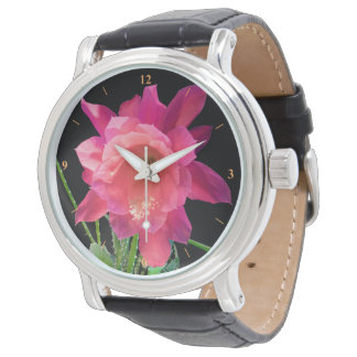 Christmas Cactus Watch