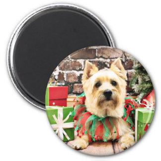 Christmas - Cairn Terrier - Lola 6 Cm Round Magnet