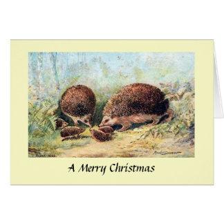 Christmas Card - Hedgehogs