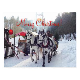 Christmas Card Merry Christmas
