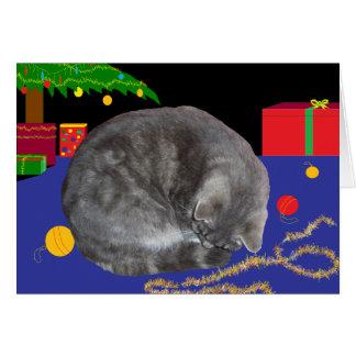 Christmas Card of Sleepy cat