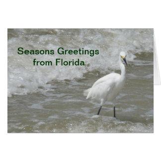 Christmas Card - Seasons Greetings from Florida -