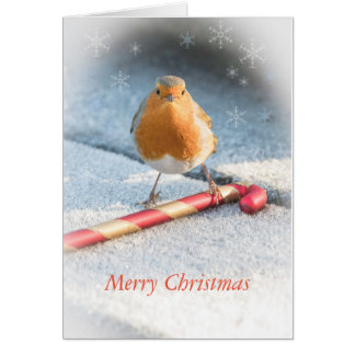 Christmas card with robin & Christmas candy sweet