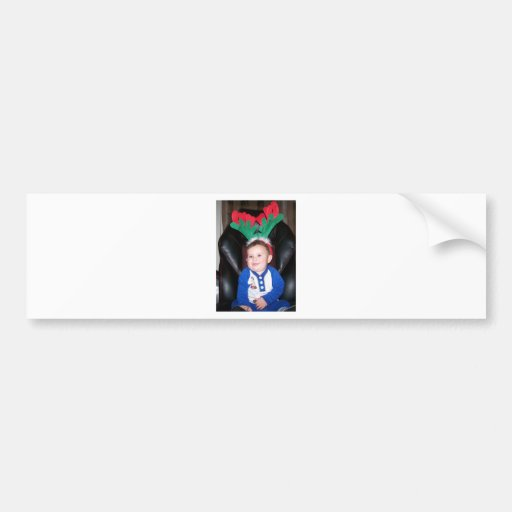 christmas cards bumper stickers