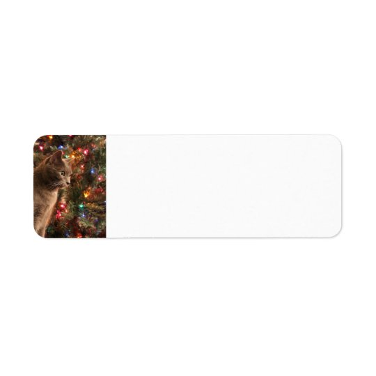 Christmas Cat Address labels - grey cat